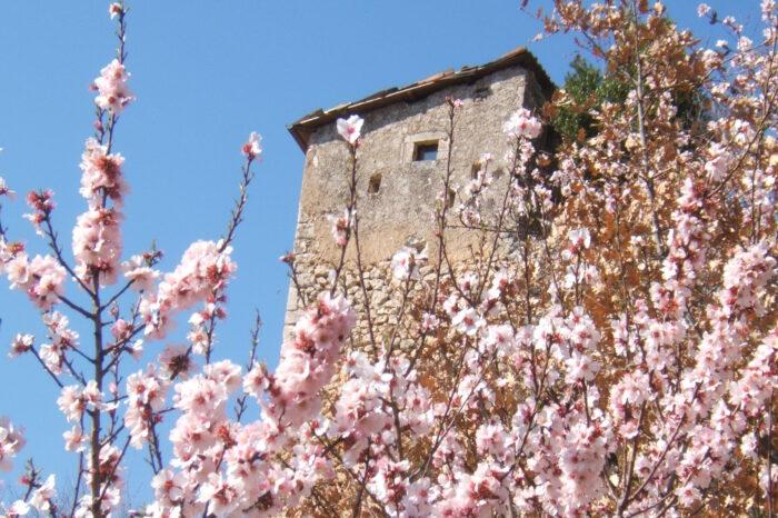 La Torricina, vista della Torre del Cornone